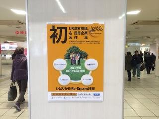 ひばりポスター1.JPG