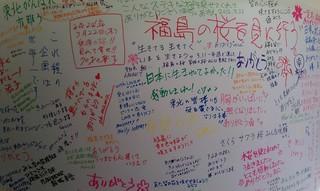 Sakura Project5.jpg